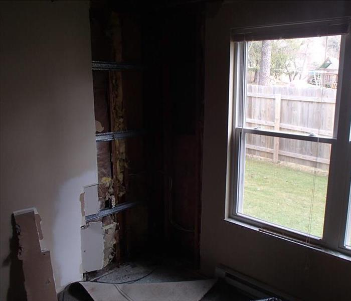 Mold Damage in Orchard Park, NY Before