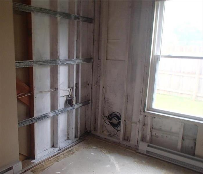Mold Damage in Orchard Park, NY After