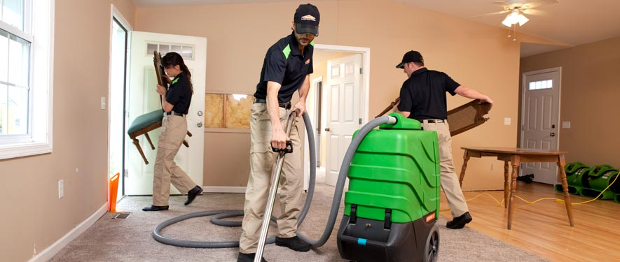 Lackawanna, NY cleaning services